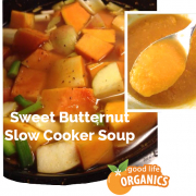 Sweet Butternut Squash and Apple Slow cooker soup