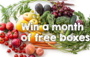 Win a Free Month of Boxes